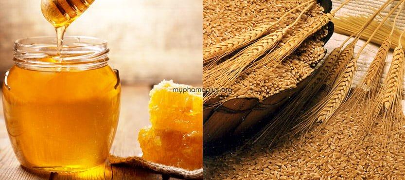 Cách #3. Trị nám đơn giản bằng mật ong + mầm lúa mì